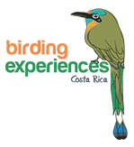 Birding Experiences